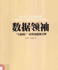 《数据领袖》王建伟_pdf电子书下载